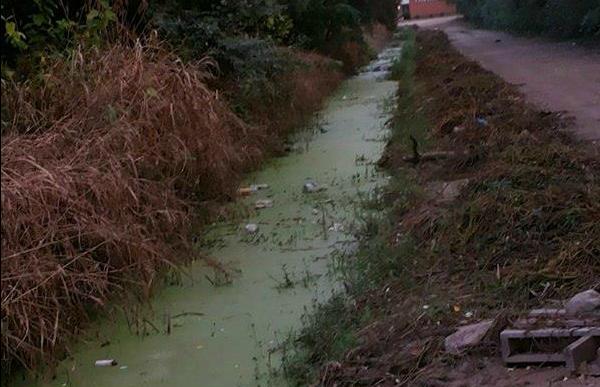 Higiene cero: así está un canal de agua en barrio Sarmiento