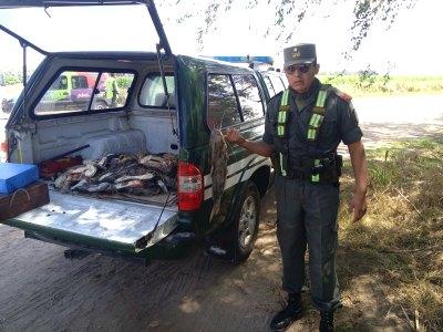 """Los """"pescaron"""" cerca de Villa Nueva con 64 bagres encima"""