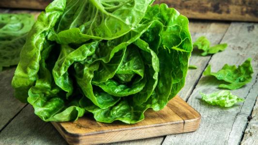 Las 10 verduras que podés sembrar en tu casa en Primavera