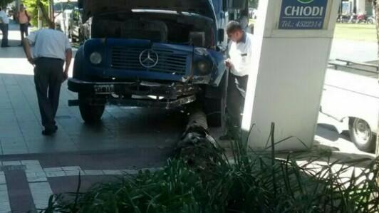 Camión se subió a la vereda y tumbó una palmera