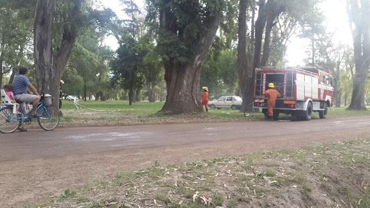 Principio de incendio en árboles del Parque de Villa Nueva