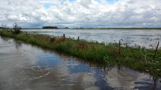 campo-inundado-zona-rural-la-playosa-pozo-del-molle