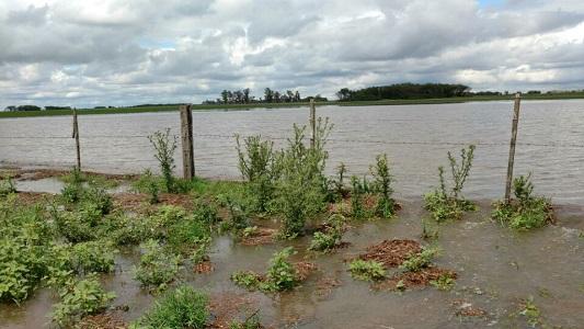 campo-inundado-zona-rural-la-playosa