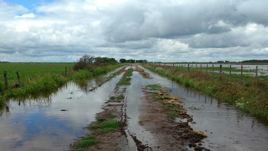 23 cuencas hídricas de Córdoba con Emergencia Agropecuaria