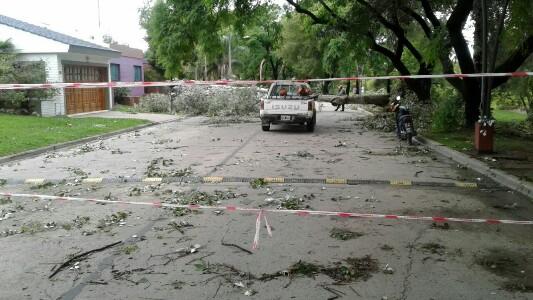 Fuerte tormenta causó daño y cortes masivos de luz