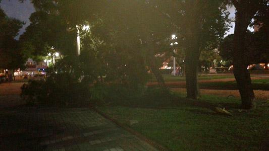 plaza-centenario-ramas-caidas-viento-tormenta-1