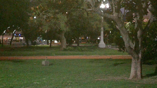 plaza-centenario-ramas-caidas-viento-tormenta-3