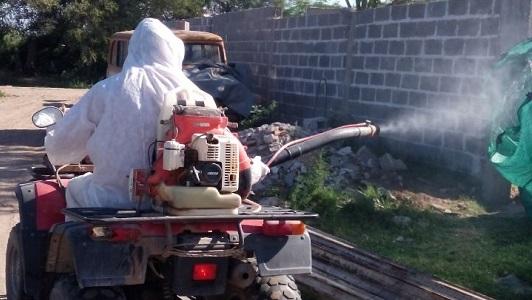 Villa Nueva sigue la lucha contra ratas y alacranes