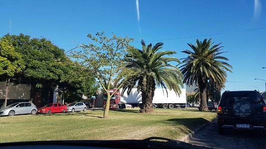Así transitaba un camión de gran porte en pleno bulevar Alvear
