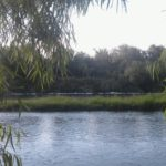 espuma rio