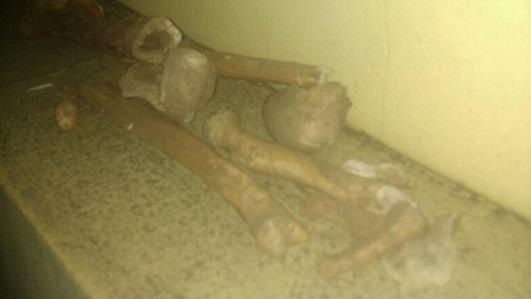 Encuentran restos óseos al excavar en una calle en Bell Ville