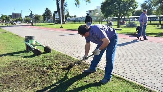 arreglos entorno parque de la vida