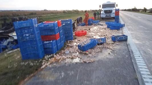 camion huevos autopista vuelco 4