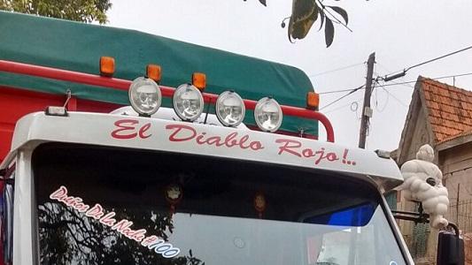 camion transporte iguanas