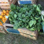 feria de frutas y verduras b mariano moreno