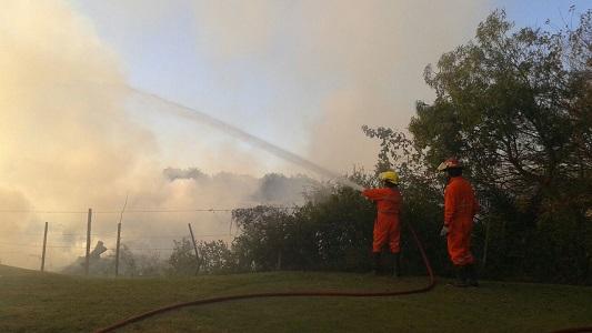 Bomberos sofocaron incendio de pastizales en la ruta 4