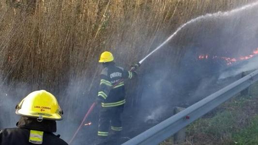 Bomberos sofocaron incendio de cañaveral a la vera de la ruta 158