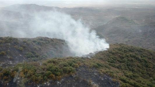 Alerta extrema por riesgo de incendios forestales en la provincia