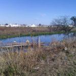 laguna maloliente 158