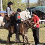 carreras burros intendente
