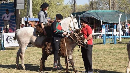 Los intendentes confirmados para la carrera de burros en Pasco