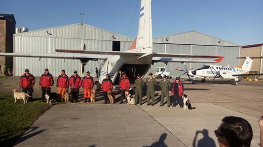 bomberos caso maldonado perros