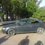 AV colon arbol caido auto roto