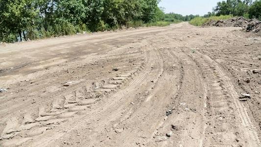 Plantarán algarrobos, espinillos y talas en Barrancas del Río
