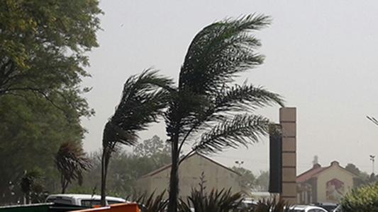 Alertan por viento sur fuerte de hasta 70 kilómetros por hora