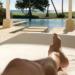 Las paradisíacas vacaciones de Luis Fonsi antes de llegar al Festival