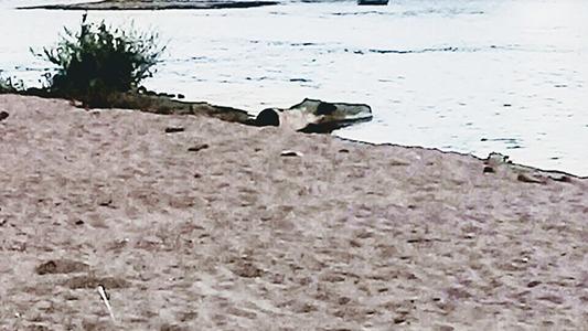 ultima playa rio costanera mal cruce con ruta 2 5
