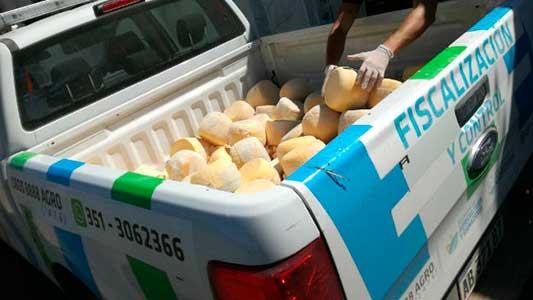 Clausuran fábrica de quesos y decomisan 5 mil kilos en Silvio Pellico