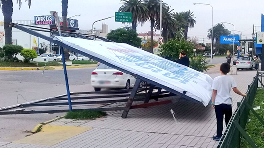 cartel bancor terminal caido parada taxi