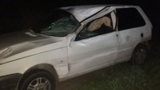 Tropilla sobre la ruta ocasionó dos accidentes de tránsito