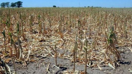 La Nación ratificó la emergencia agropecuaria en Córdoba