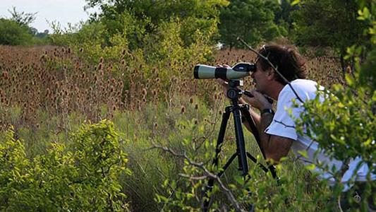 Cacería fotográfica: invitan al primer safari para retratar especies en el Parque Tau