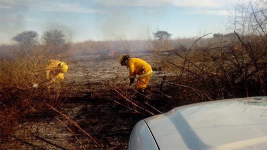 El segundo en 24 horas: incendio en un campo cerca de la escuela Rural de Cabral