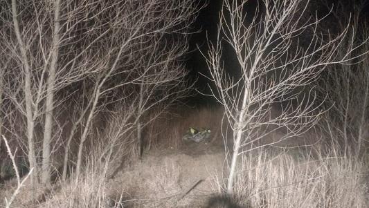 Pasó de largo en una curva y se metió varios metros dentro de un campo