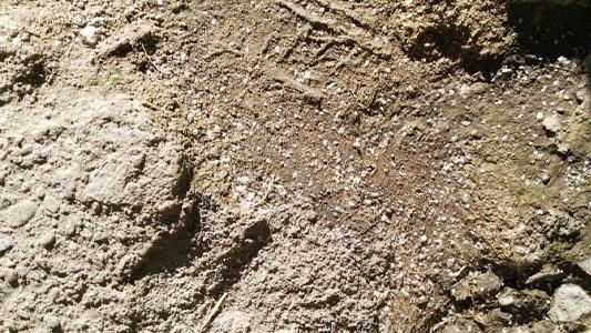 Quejas de vecinos por caída de pelecho en el Barrancas del Río