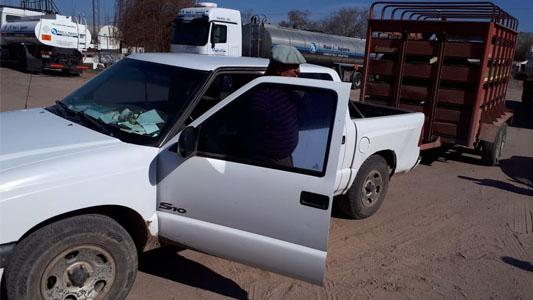 Una camioneta que transportaba vacas chocó a dos ciclistas