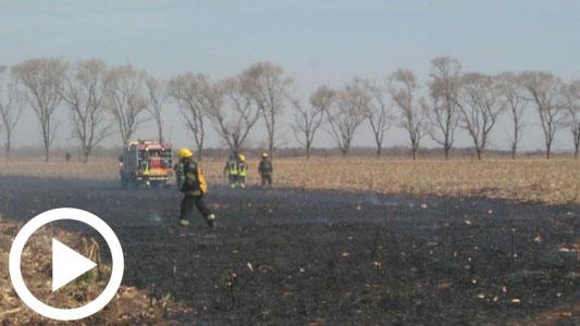 Fuego en un campo: Bomberos y tractores trabajaron en mil metros de llamas