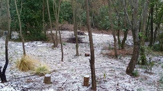 Nieva en el sur de Córdoba y podrían caer copos entre Pasco y Las Perdices