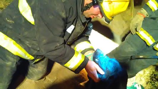 Bomberos rescataron a un perro atrapado en una alcantarilla en Villa Nueva