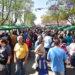 Feria Franca: Gran convocatoria de vecinos y largas filas para comprar