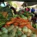 Feria Franca: Prometen precios 25% más bajos y colectivos gratis