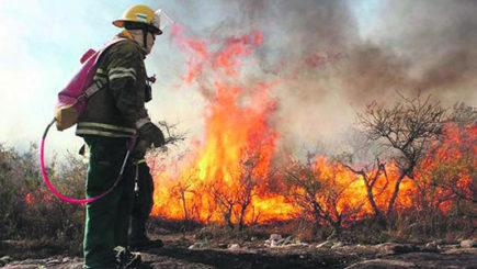 Viento y calor: condiciones de riesgo extremo para los incendios forestales