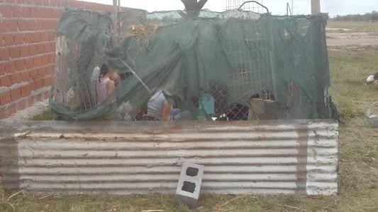 Desamparados en la tormenta: Con  4 hijos quedaron a la intemperie en un baldío