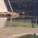 Reclaman por agua estancada debajo del puente que genera nidos de mosquitos