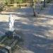 Bell Ville: para tener mayor control, instalaron cámaras de seguridad en el Parque Tau