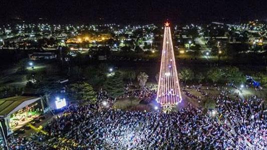 Tio Pujio: se podrá ver en vivo el encendido del árbol gigante de navidad